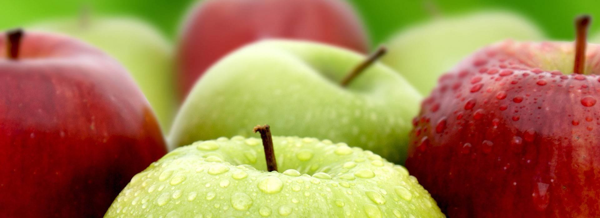 Programa Estilo de Vida Saudável e Perda de Peso